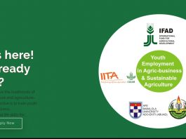 Application for IITA Youth Employment in Agric-business and Sustainable Agriculture (YEASA) Program 2020