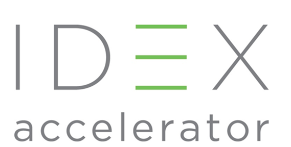 2020 IDEX Virtual Fellowship Program Application in Social Enterprise