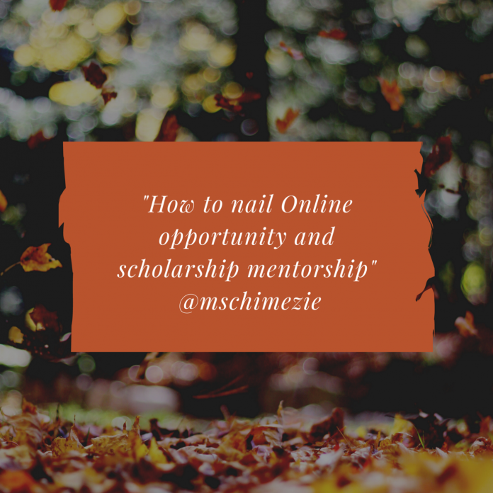 How to nail Online Opportunity and Scholarship Mentorships - Chimezie Anajama