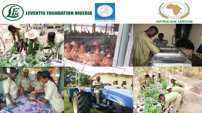 Leventis Foundation N1,000,000 Agricultural Youth Summit Grant 2020 Application