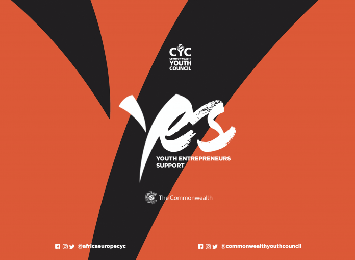 Youth Entrepreneurs Support (YES) Initiative Application