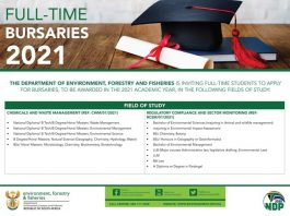 Department of Environment, Forestry & Fisheries Bursaries 2021 for South Africa Undergraduate and Postgraduate Students