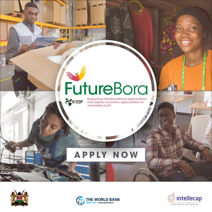 futurebora.go.ke Future Bora Initiative 2020 for Kenya Youth based Organizations