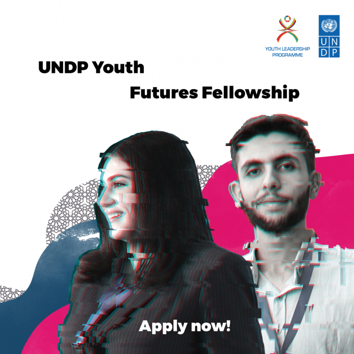 United Nations Development Programme (UNDP) MENA Region Youth Futures Fellowship 2020