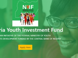 NYIF Gives New Guidelines After Receiving Over 3 million Applications