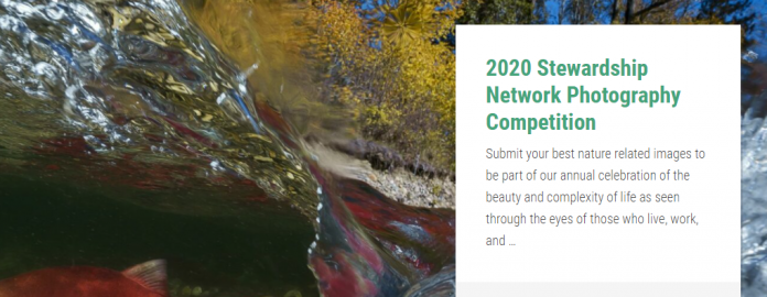 Stewardship Network Photography Competition 2020