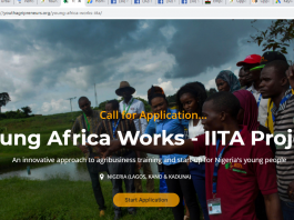 2020 Young Africa Works IITA Project & Training Program for Nigerians