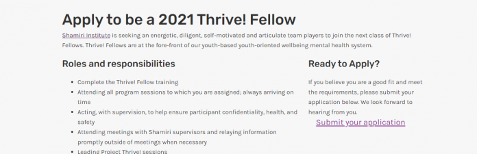 Shamiri Institute 2021 Thrive Fellowship for Kenyans